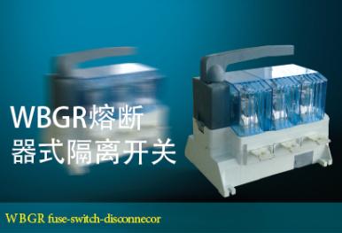 WBGR熔断器式隔离开关